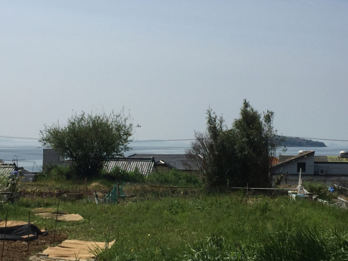 麗しき幡豆の海です_a0327716_13365564.jpg