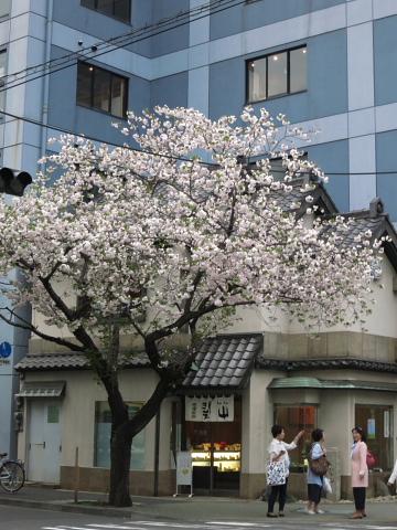 「ぶらパルマ」 in 日本橋、人形町。_d0046025_11293452.jpg