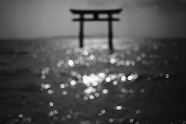琵琶湖 2 (3カット)_e0342136_22431635.jpg
