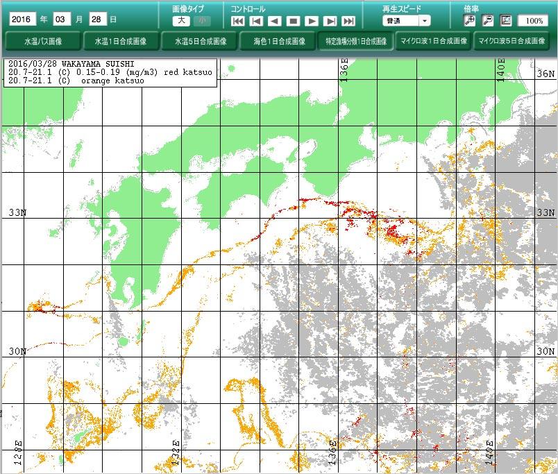 和歌山県水産試験場_f0009039_1844521.jpg