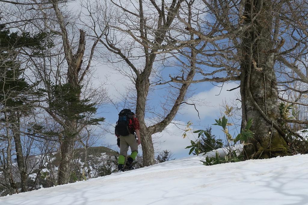 イチャンコッペ山と幌平山、4月12日_f0138096_17253073.jpg