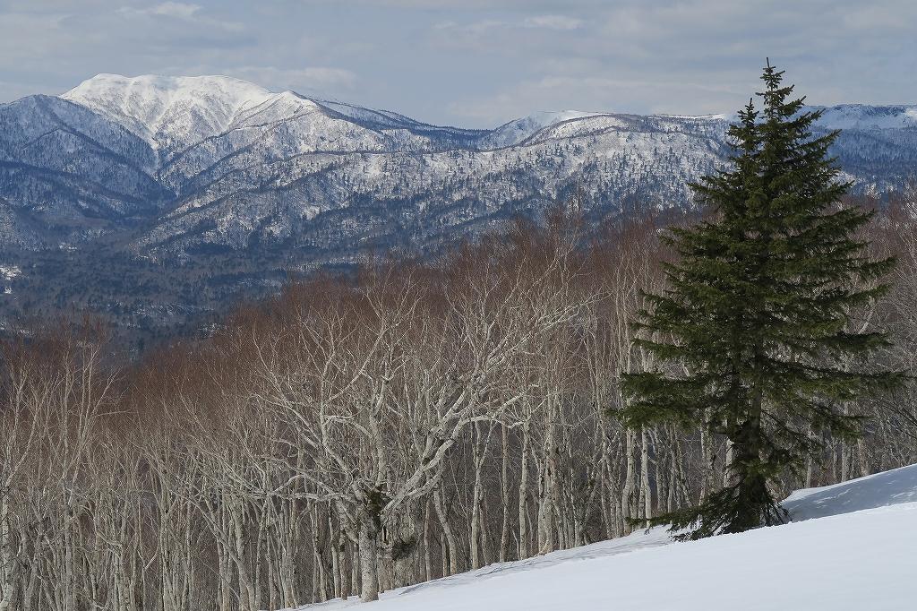 イチャンコッペ山と幌平山、4月12日_f0138096_17264544.jpg