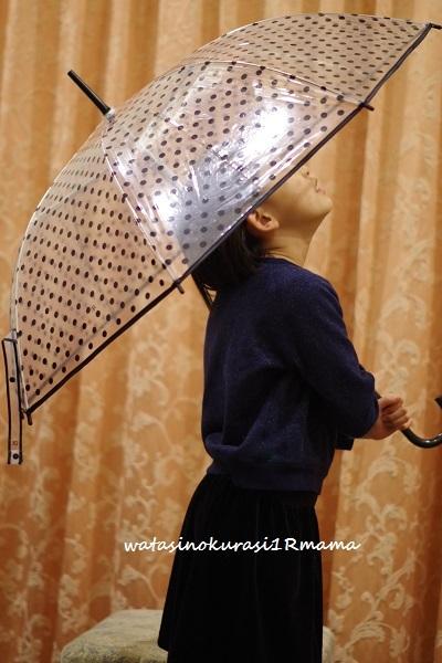新しい傘  _c0365711_07112655.jpg