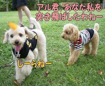 b0183917_1222011.jpg