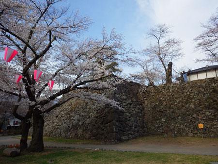 小諸 懐古園の桜!_d0035921_123382.jpg