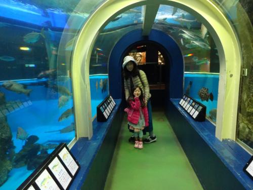 富山の魚津水族館(*^^*)_f0170422_08043332.jpg