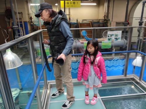 富山の魚津水族館(*^^*)_f0170422_08043493.jpg