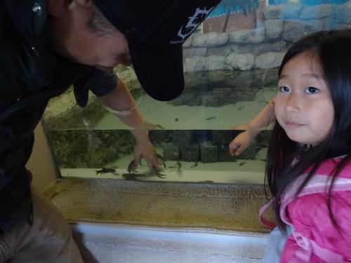 富山の魚津水族館(*^^*)_f0170422_08043591.jpg