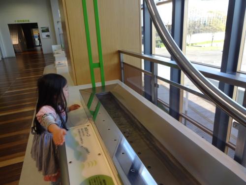 富山市科学博物館(*^^*)_f0170422_08212784.jpg