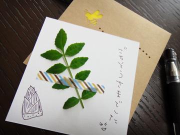 サンキューカード☆_d0171830_11244592.jpg