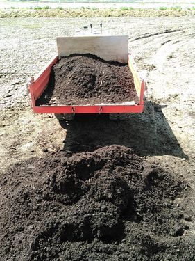 私のまめつぶ自給農園2016 Vol.2畑の準備_b0206037_17045709.jpg