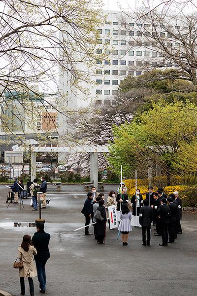 皇居の桜_a0003650_22111771.jpg