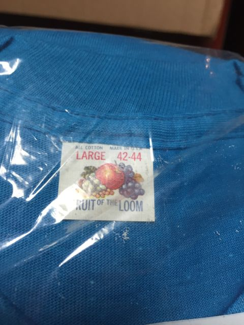 アメリカ仕入れ情報 #34 デッドストック大量発掘! ⑥ フルーツオブザルームポケットTシャツなど!_c0144020_1321139.jpg