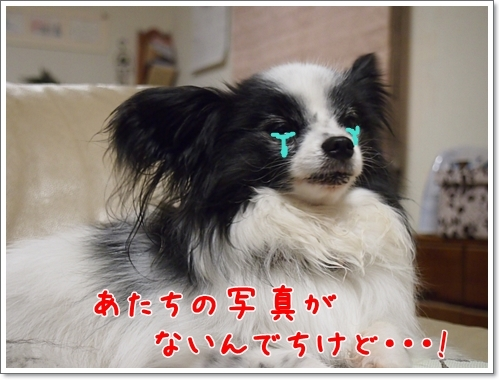d0013149_00320325.jpg