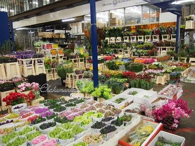 春のお花 New Covent Garden Flower Market_f0238789_20584679.jpg