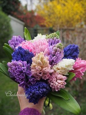 春のお花 New Covent Garden Flower Market_f0238789_21194852.jpg