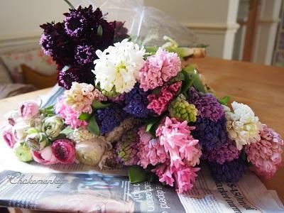 春のお花 New Covent Garden Flower Market_f0238789_2191291.jpg