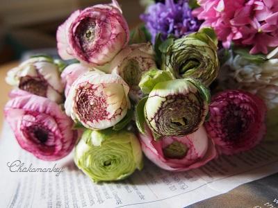 春のお花 New Covent Garden Flower Market_f0238789_2195350.jpg