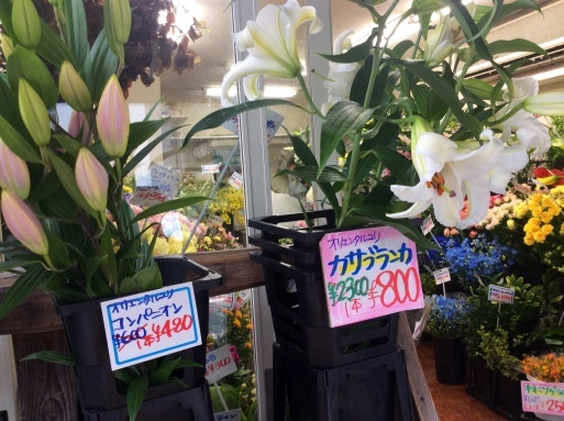 晴れた日には花を買って…_b0210699_23253285.jpg
