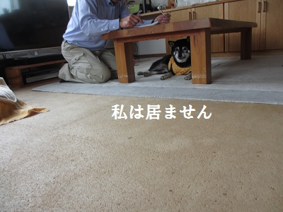 家検の日_f0068501_22201420.jpg