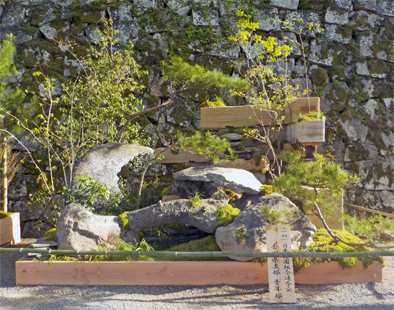 造園を学ぶ_f0045132_17172886.jpg
