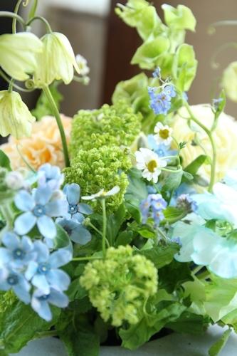 ブルーに願いを・・・_d0086634_16490232.jpg