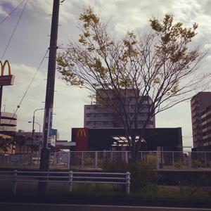 風の午後_a0014840_917412.jpg