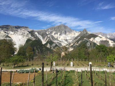 大理石の山の事故と熊本の地震_d0136540_03505853.jpg