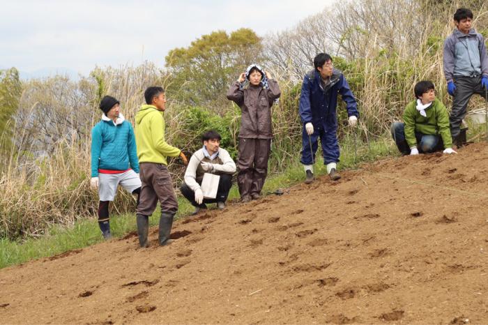畑の続き フードカルチャー ルネサンス_d0099845_15211984.jpg