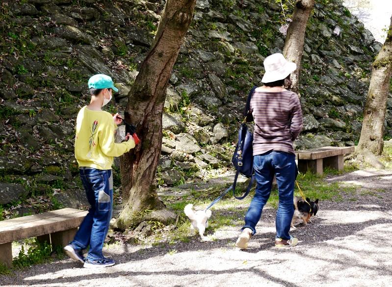 和歌山城公園にて_b0093754_115397.jpg