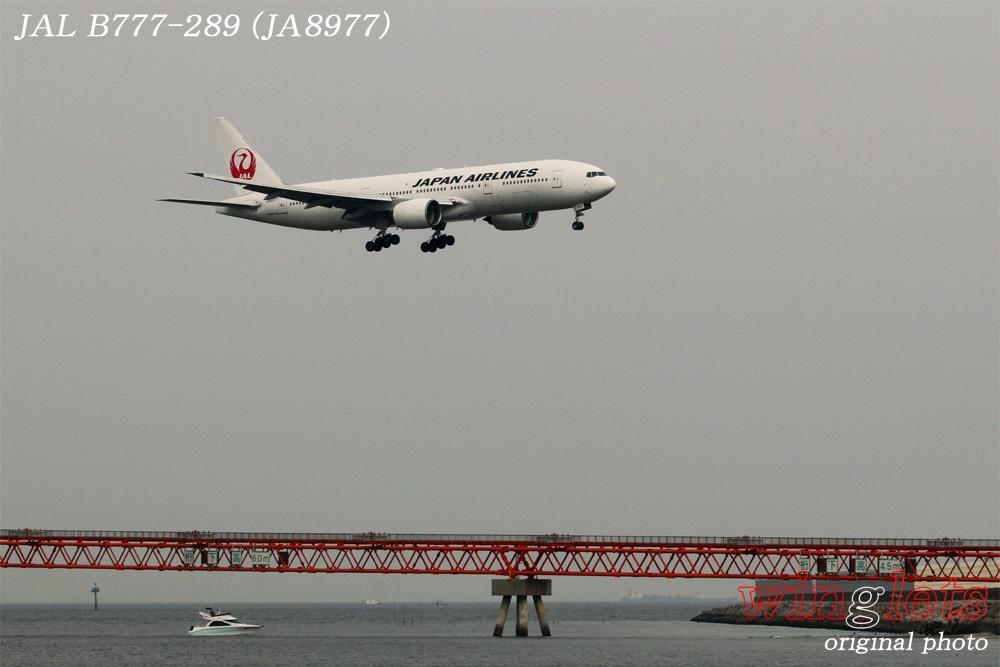 '16年 京浜島・つばさ公園レポート ・・・ JAL/JA8977_f0352866_15145827.jpg
