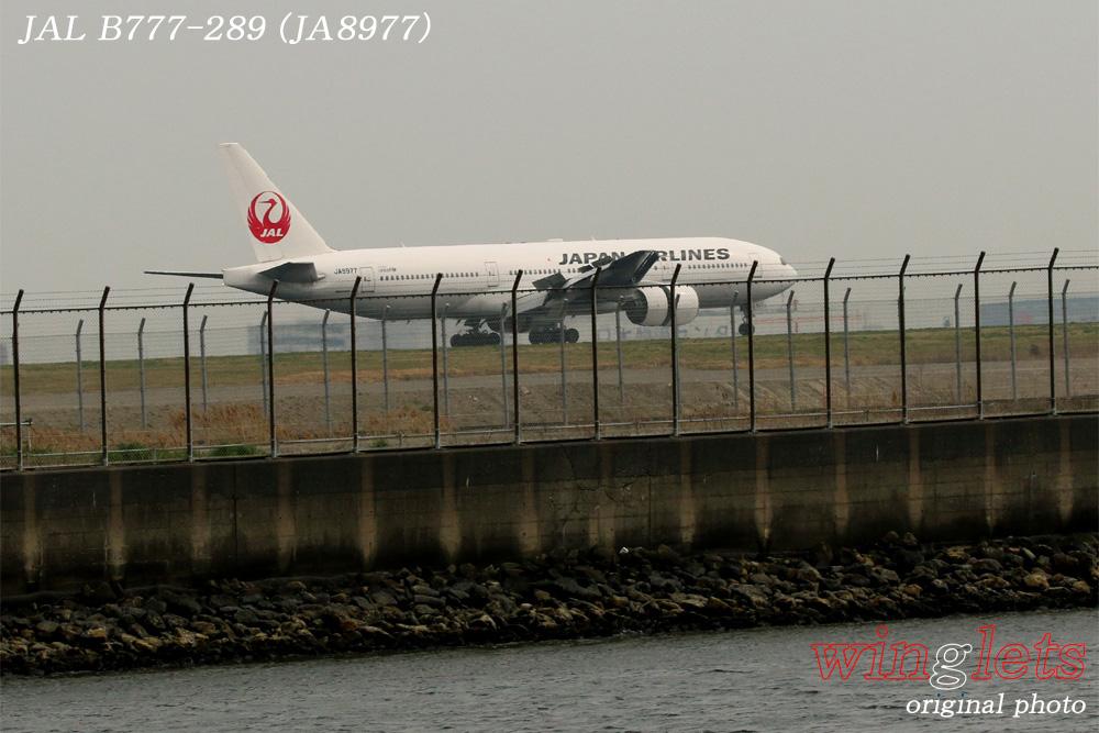 '16年 京浜島・つばさ公園レポート ・・・ JAL/JA8977_f0352866_15151713.jpg