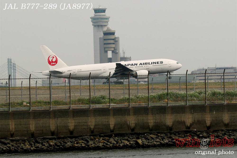 '16年 京浜島・つばさ公園レポート ・・・ JAL/JA8977_f0352866_1515536.jpg