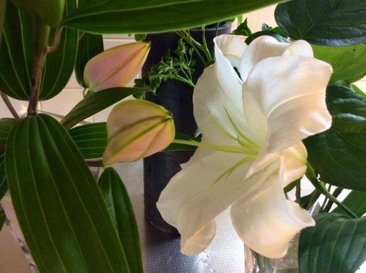 晴れた日には花を買って…_b0210699_00001153.jpg