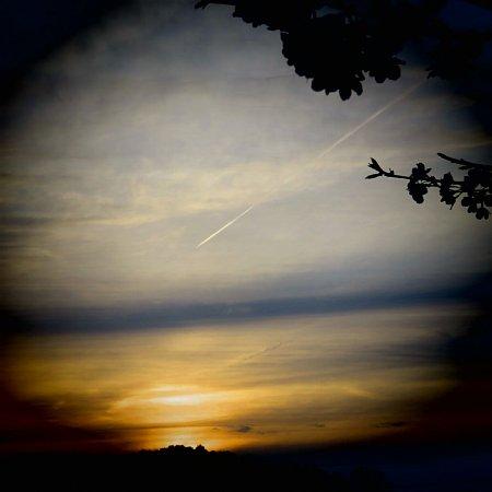 2016年4月24日 飛行機雲と桜花_b0341140_1424015.jpg