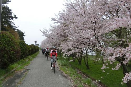 琵琶湖サイクリング_b0332867_21430952.jpg