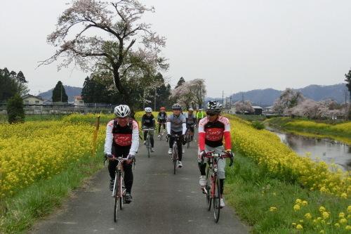琵琶湖サイクリング_b0332867_21474071.jpg
