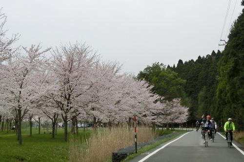 琵琶湖サイクリング_b0332867_21492493.jpg