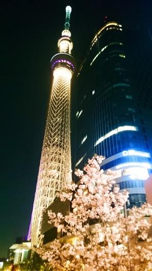 東京スカイツリーと遅咲き桜のコラボ_b0083801_09304560.jpg