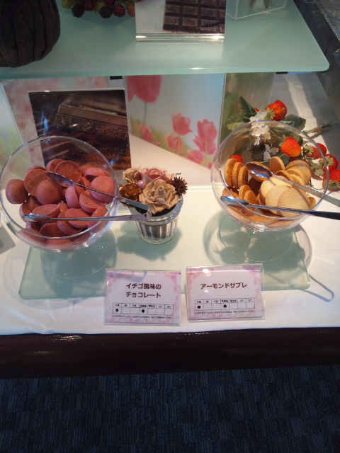 川崎日航ホテル 夜間飛行 春のショコラスイーツブッフェ_f0076001_23235859.jpg