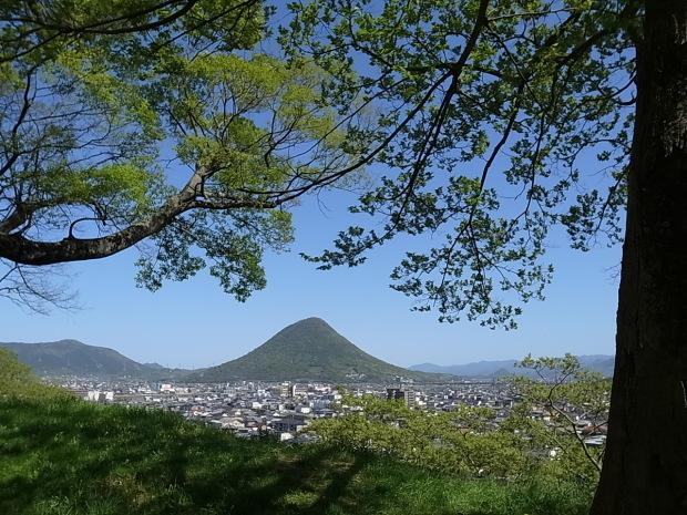 丸亀城ほか丸亀市散策_f0197703_12060276.jpg