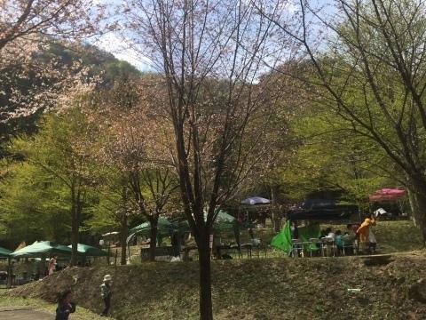 たんぽり荘春祭り2016_e0115904_04431034.jpg