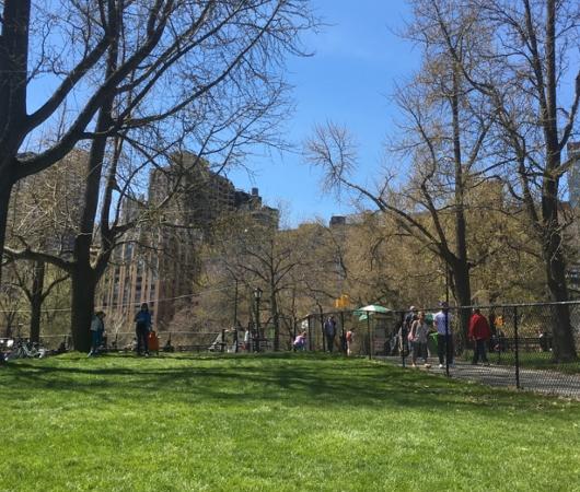 ほのぼのムードの春のセントラルパーク、広大な芝生広場のシープメドーの様子_b0007805_21125516.jpg