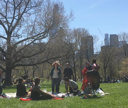ほのぼのムードの春のセントラルパーク、広大な芝生広場のシープメドーの様子_b0007805_2113815.jpg