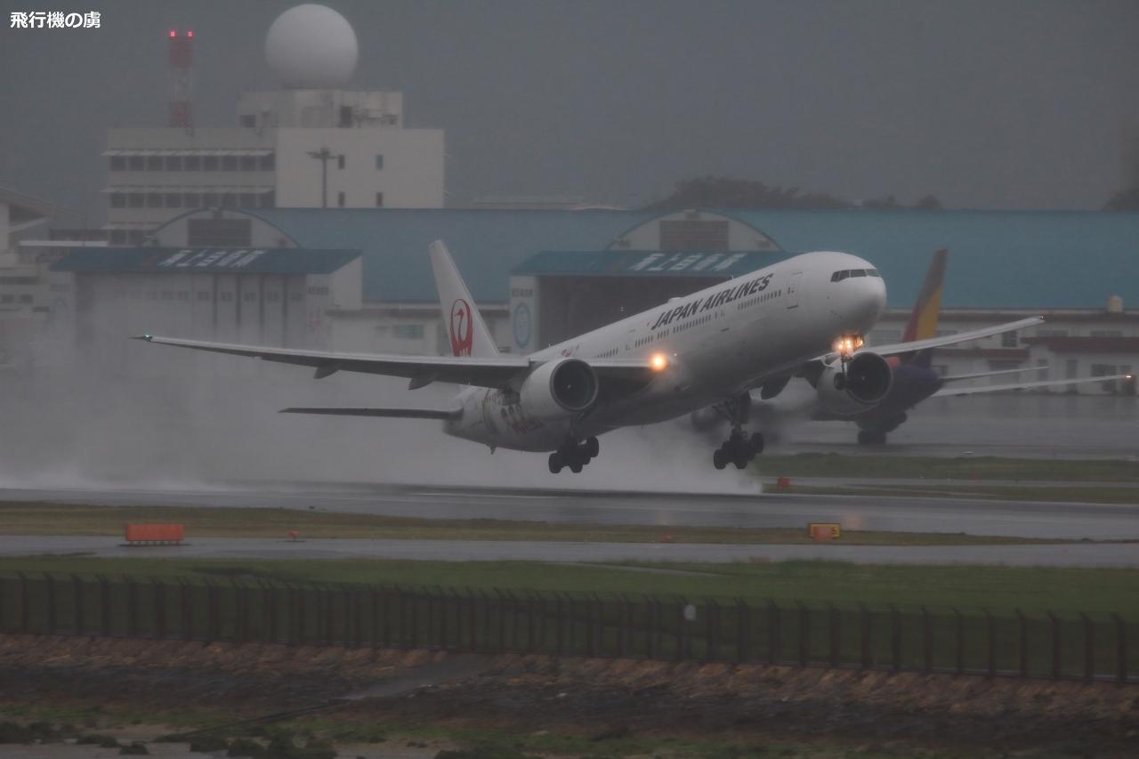 雨天の離陸 FLY to 2020特別塗装機  日本航空(JL)_b0313338_21020111.jpg