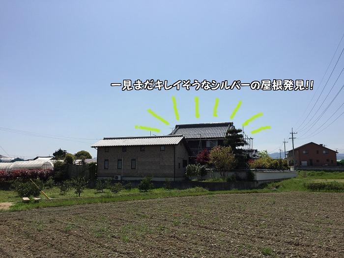 b0168041_17401940.jpg