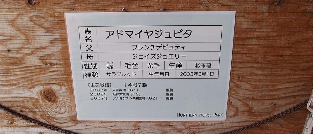 2015.5.1 ノーザンホースパーク☆アドマイヤジュピタ【Thoroughbred】_f0250322_18225028.jpg