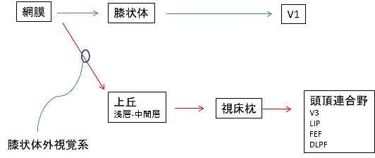 f0088231_11110377.jpg