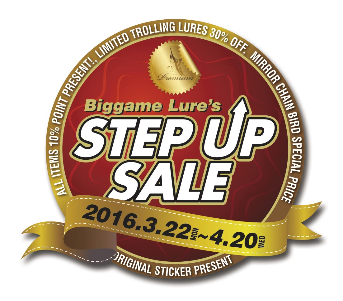 STEP-UP SLAE_f0009039_12522695.jpg