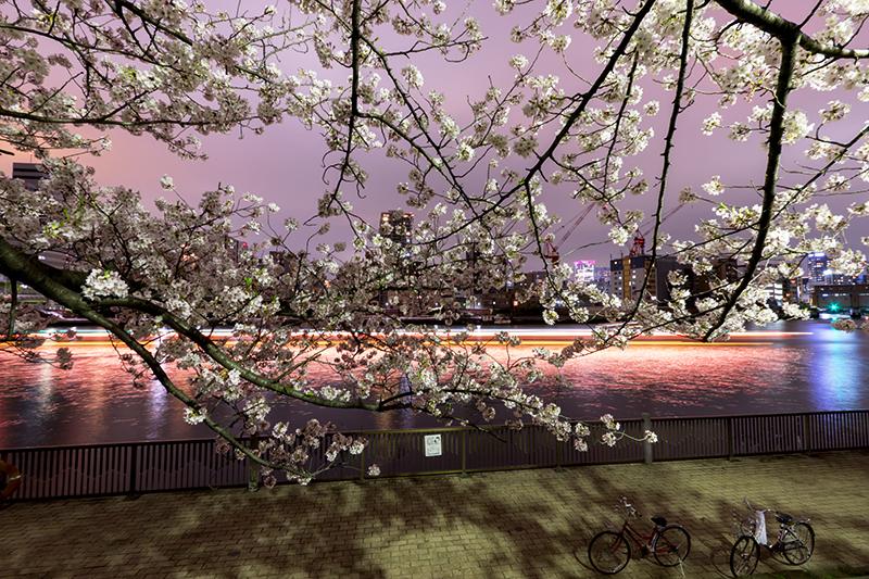 Hello from Tokyo 44 佃島_a0003650_22502636.jpg